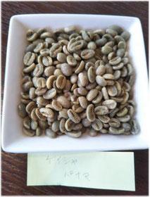 パナマ・ゲイシャの生豆(神戸ファクトリーナコーヒー)