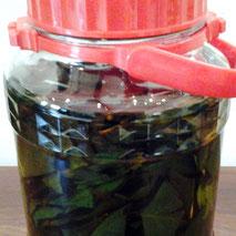 びわ の 葉 茶 作り方