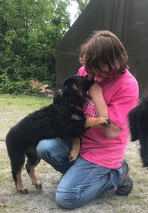Hannah's fokker / breeder : Angelika