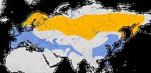 Karte zur Verbreitung des Bergfinks (Fringilla montifringilla) Bilder hier reinziehen.