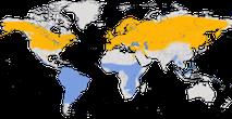 Karte zur Verbreitung der Uferschwalbe (Riparia riparia).