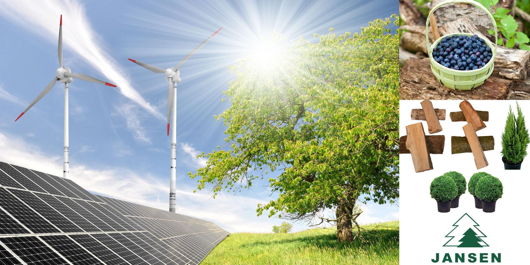photovoltaik solarthermie weihnachtsbaum hamburg. Black Bedroom Furniture Sets. Home Design Ideas