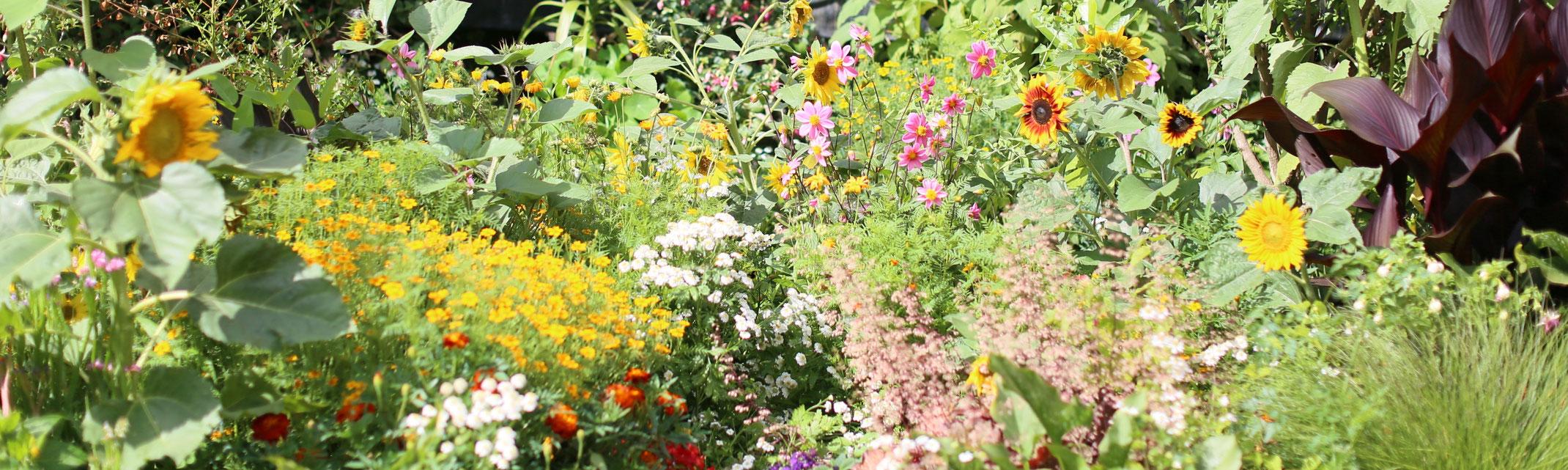 leistungen Natura Gartenbau