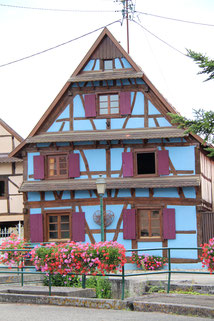 Strasbourg carole giboni artiste aquarelles déco peintre