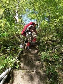 下りは楽だけど、登りは辛かった。