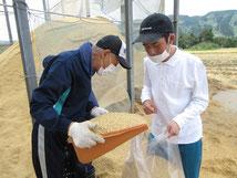 農福連携事業①