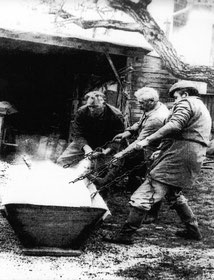 Porc ébouillanté dans la maie, en 1940