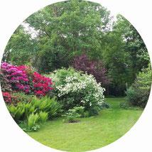 Gartenpflege und -gestaltung