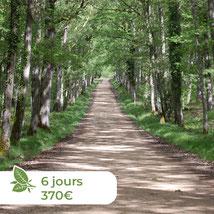 Les ânes de Madame - Balades accompagnées en Sologne, Val de Loire, châteaux de Chambord, Cheverny, Villesavin, du Moulin - Randonnées itinérantes Comme des Robin des Bois
