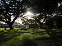 Campus de l'UWI, Trinidad