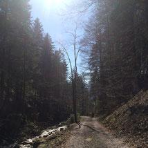 Der Weg, Auszeit auf der Alp, Ronald Kalbermatten, Der Coach