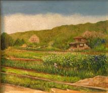 エンドウの花が咲くころ 油彩10号