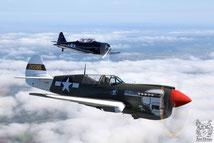 P-40 & T-6