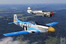 P-51 & P-40
