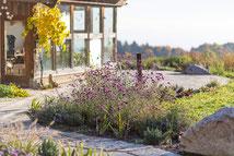 Gartenplanungen Renate Waas