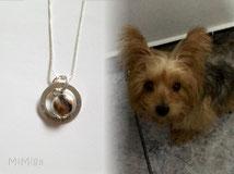 joya-artistica-con-pelo-animal-mi-miga-collar-plata-ley-aro-grabado-estrella-perla-cristal-perro-lilly
