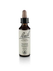 Bach Blüten Nr. 34 Water Violet Sumpfwasserfeder