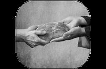 Beneficenza-Donazioni