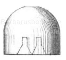 Zylindrophärisches Spitzgeschoss (Nessler)