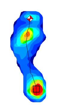 point修正後歩行時足圧部分布移動