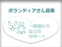 せとうち保護犬猫の里 せとうちドッグパーク