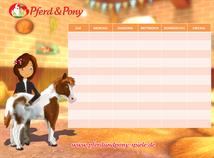 Stundenplan Pferd & Pony