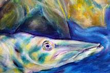 Fisch, Hecht