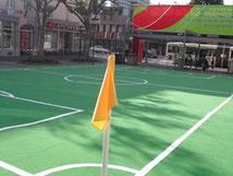 Soccer World Cup 2006 Grass Carpet
