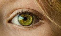 Wir haben ein wachsames Auge auf Ihre Erträge - jederzeit!