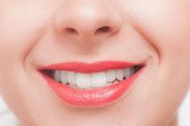 歯の構成は、20万年以上前の古代から変わっていないのです。
