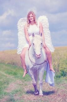 Fotovorlage von Sylvia Hengelein / Photography-SH