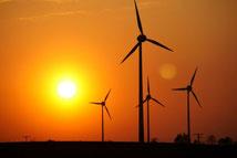 100000 Euro Geldanlage-Strategie in ökologische Projekte