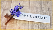 Jeden Sonntag* zwischen 10:00 und 11:00 Uhr steht den Gartenmitgliedern im Vereinshaus ein Vertreter der Vereinsleitung für persönliche Anliegen zur Verfügung.