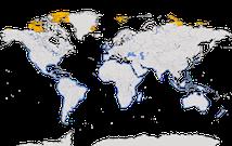 Karte zur Verbreitung des Sanderlings (Calidris alba)