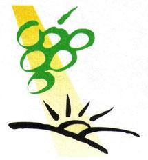 Logo VSW
