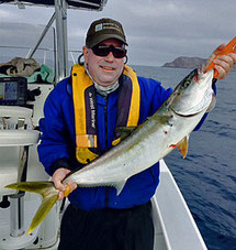 Yellowtail caught fly fishing off San Diego