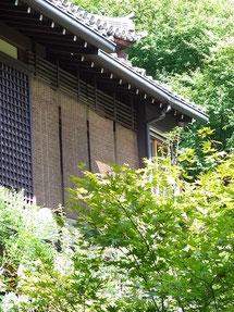 夏のもみじ@京都大原の寂光院