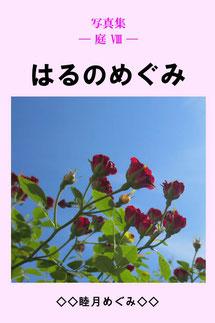 写真集 ― 庭 8 ― はるのめぐみ  著者 睦月めぐみ