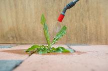 Nanoprotect-BioActive wirkt mikrobiotisch gegen Gerüche