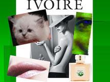 Purest of Ivories, sait se faire discret tout en restant élégant, sobre et sensuel...