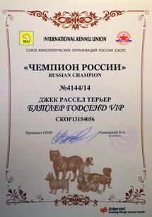 Сертификат Чемпиона России