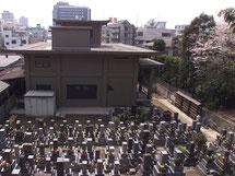 墓地の様子-東京 小日向 本法寺-東京都文京区のお墓 永代供養墓 法要-