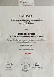 Franz Haberl, 1.Platz beim praktischen Ausbildungskurs 2013 des BWZ OÖ, seit 2013 im Betrieb tätig