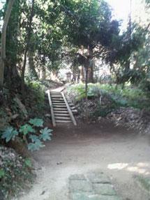 左へ行く階段の先に