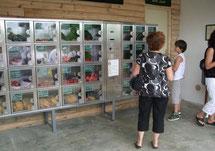 distributeur automatique La cueillette de cappy - Cappy - Somme - Picardie - Vallée de la Somme - Pays du Coquelicot- fruits et legumes de saison - producteur