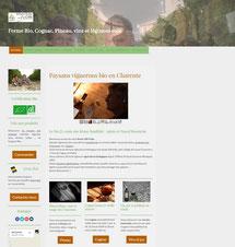 site Bio j'y crois créé en formation avec e-cime.fr spécialiste du site avec optimisation Référencement pour TPE