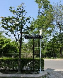 吉祥寺通りから三鷹駅のほうに向かう風の散歩道(玉川上水沿い)で記念館へ