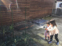 フェンスと水やりする子どもの写真