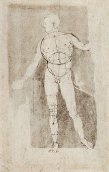(19) Albrecht Dürer, Adamo (disegno della costruzione), 1504, penna marrone, 26,2 x 16,6 cm, n. invent. 3080v, Albertina / Vienna