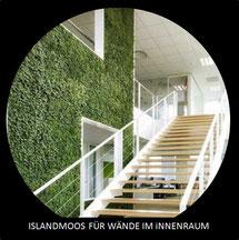 IslandMoos in wahrer Form - Zuhause oder im Büro -